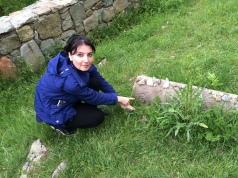Uncovering ancient symbols in Armenia ©Rita Minassian